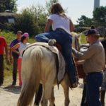 Les avantages d'une balade à cheval, où aller ?